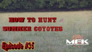 How to Hunt Summer Coyotes in Tennessee S8:E35