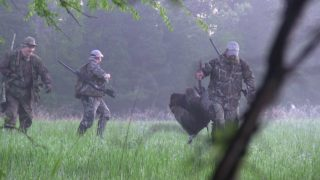 "Turkey Hunting Call-Shy Gobblers in South Arkansas (""One is Better Than None"")"